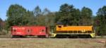 Picture perfect train