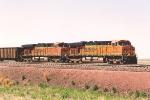Northbound empty coal train
