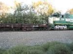 CFNR 109