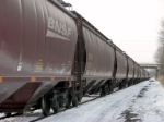 A strang of BNSF covered hoppers on Y122