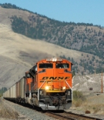 BNSF 9393  (Coal Drag)