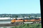 BNSF 1036 & BNSF 7254 THRU BUS WINDOW