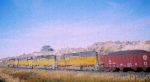 UNION PACIFIC SD40-2's LEADING A UNIT COAL TRAIN!