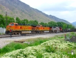 BNSF's Denver-Provo Manifest.Ironton,Utah.May 23.2010.