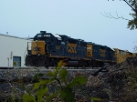 CSX 2624 from the weeds