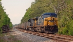 CSX 316 leads loads for newport news