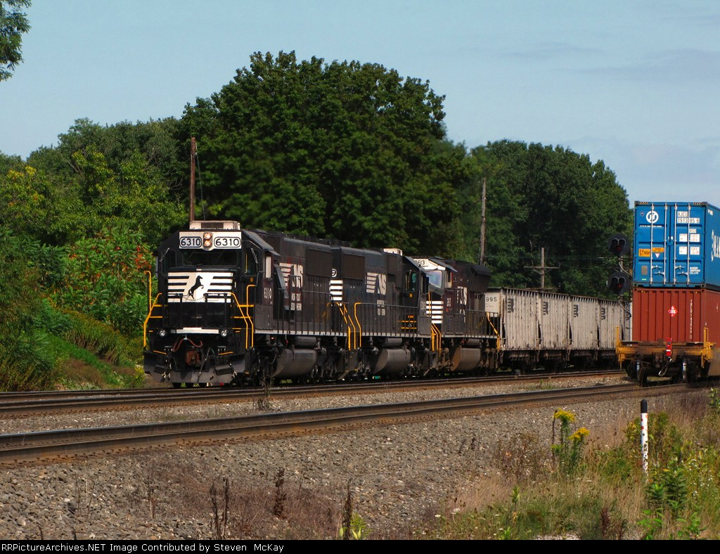 NS 6310