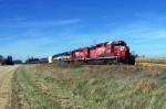 CP 5965 leads stretched-out ethanol loads