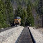 UP 5439 at Mott,CA near Mt Shasta