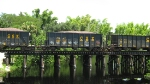 SGRR Alligator Creek Trestle Punta Gorda