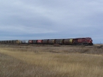 CP 8646 Leads a Manifest Train Through Southern Canada