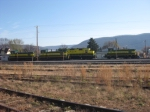 A whole lot of Reading green and yellow in the Newberry yard