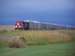 Westbound Autorack Train Passes the Blowing Grasses and Hay Bales
