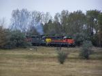 A DMVW Grain Train Emerges From the Trees