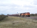 Long, Long Grain Train Heads East to Minot and Points Beyond