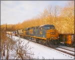 CSX 813 and 7750