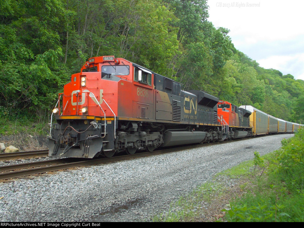 CN 8838 and 8933