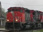 CN 5241