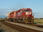 CP 3007