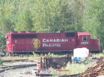 CP 4657