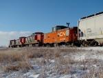 CN 79923