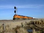 BNSF 7310