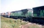 NENE 5567