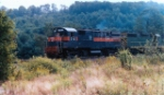 D&H Wreck train