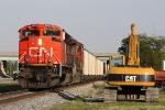 CN 8902