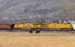 UP 7345/UP 5282 FEBRUARY 28,2010 IRONTON,UTAH.