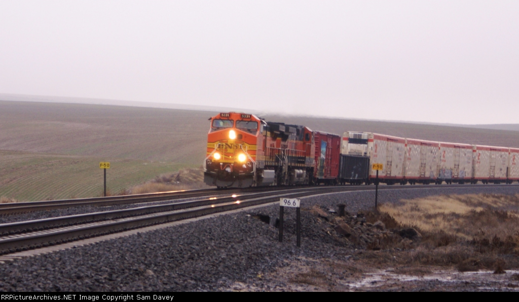 BNSF 5331 leads the SPOPAS West.