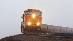 BNSF 7695 with a brown worm following it.