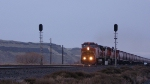 BNSF 658 splits the signals