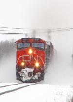 CN 2561