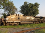 NS 9762 has that bronze thing going on