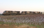 Unknown empty NB grain train