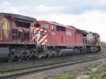 CP 9009