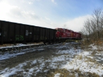 CP 7307 and 8244