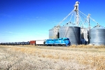 Grain country