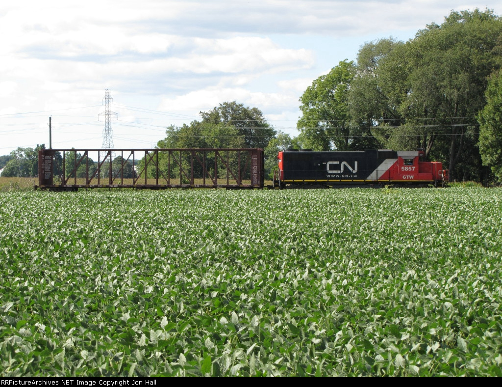 L521 sits amid the beans as it waits in the siding