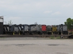 Stored Alco's gather around the turntable