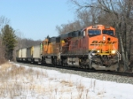 BNSF 6189 & 9880 charge westward near the Lake Michigan shore with E950