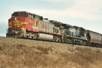 Westbound grain train