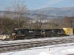 NS 8785 & NS 8828
