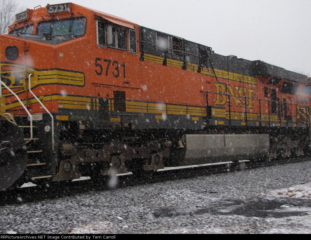 Its a bird, its a train, its Snow!!
