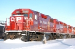 A line of red at CP Lambton Park