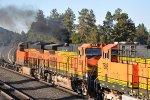 Smokey BNSF 684