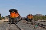 BNSF 4743 & 6790