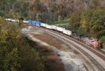 NS Train 229