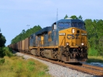 CSX 749 NB Coal Empties